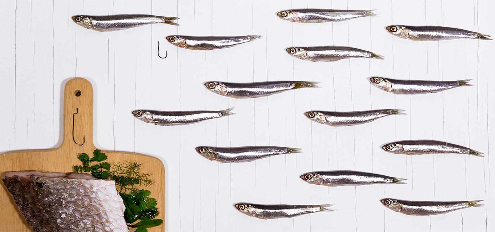 Ristorante L'Enoteca Le Case menù di pesce